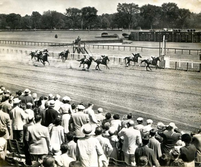 On the Saratoga race track 1954