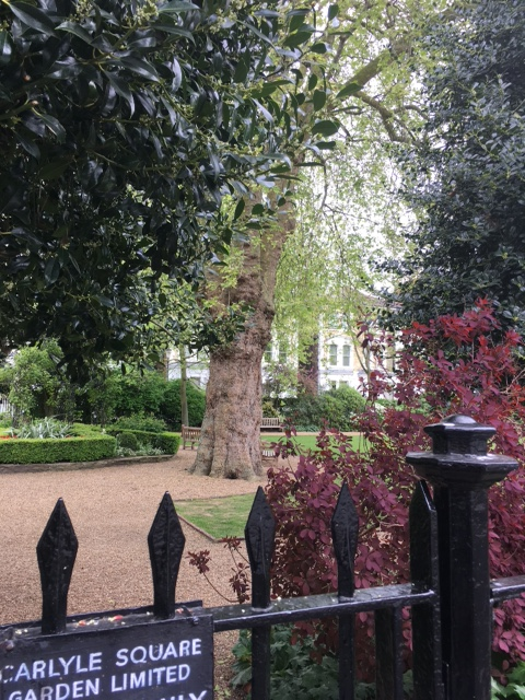 The Gardens - Carlyle Square. (Photo: David Salter)